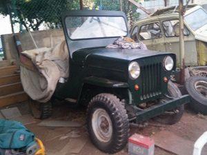 ג'יפ סי ג'יי 3-B 1955